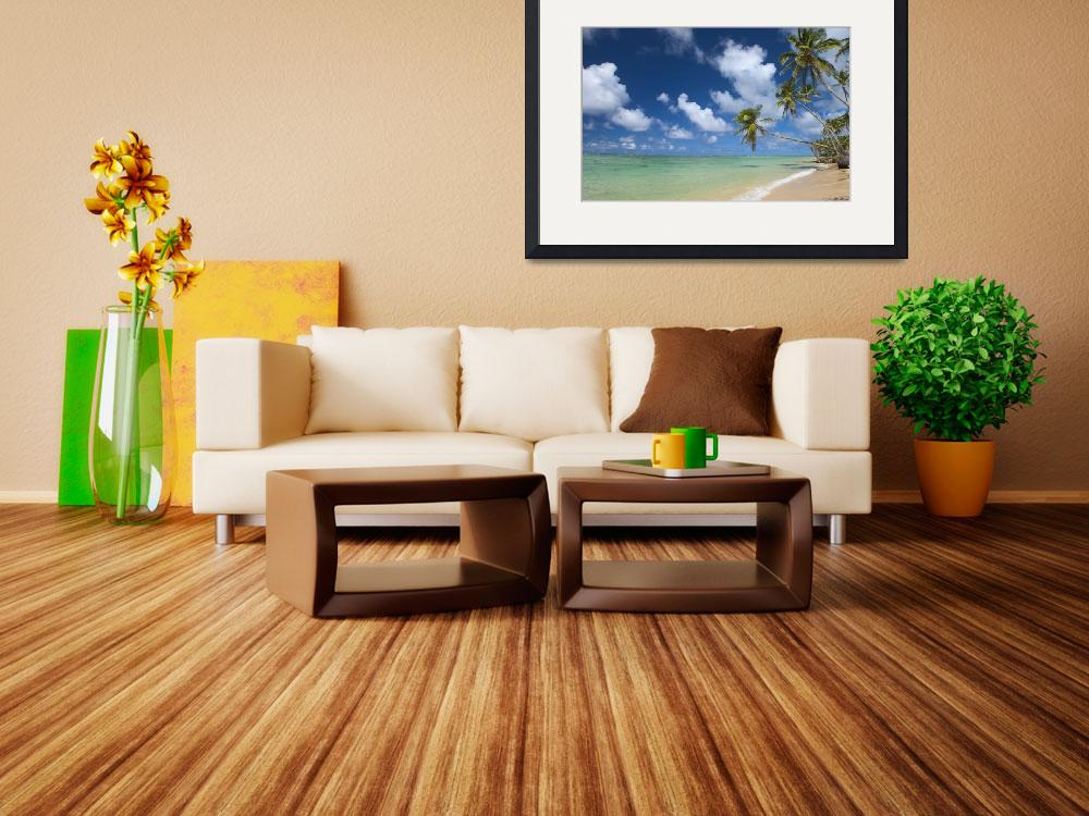 """Hawaii, Palm Tree Leaning Over Beach&quot  by DesignPics"