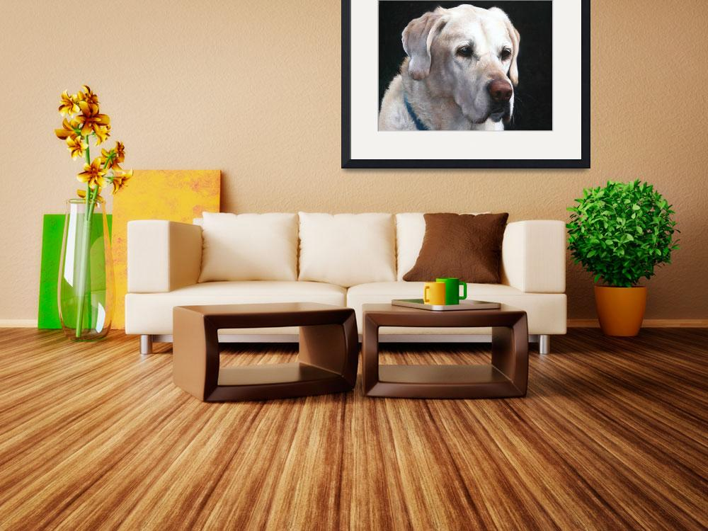 """Portrait of A Yellow Lab&quot  (2008) by sandybuckley"