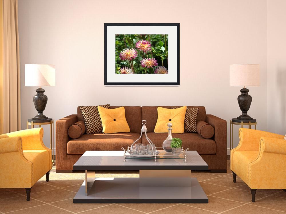 """Dahlia Art Prints Pink Purple Dahlia Flowers Art&quot  (2009) by BasleeTroutman"