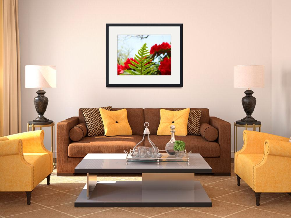 """Green Fern art prints Red Rhododendrons Flowers&quot  (2010) by BasleeTroutman"