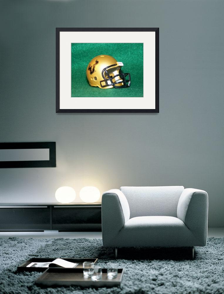 """Go USF Bulls!&quot  (2008) by christophertaylorphotography"