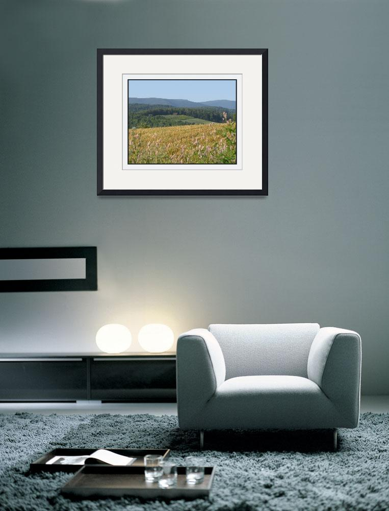 """Wellsboro Pennsylvania Corn Field Landscape&quot  (2010) by CuriousEye"