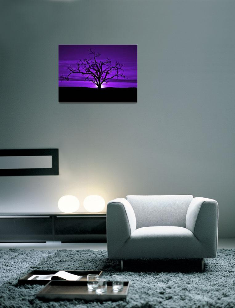 """Naked Tree In Purple Skies&quot  (2009) by redday"