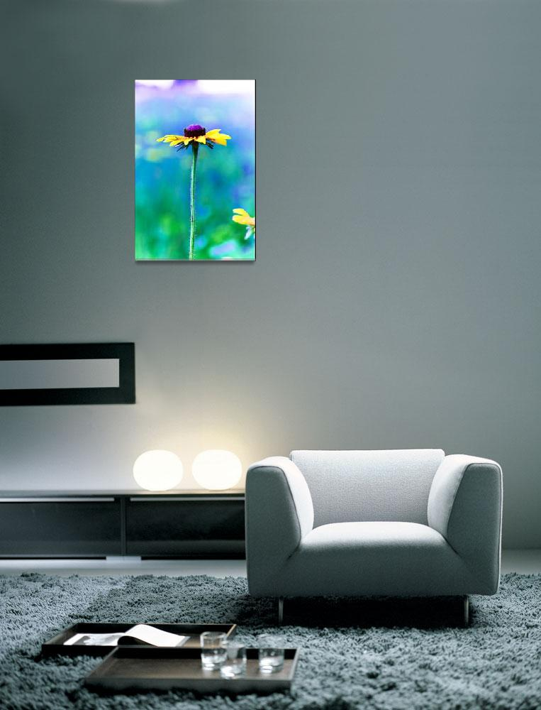 """a flower for monet&quot  (2008) by whidbychick"
