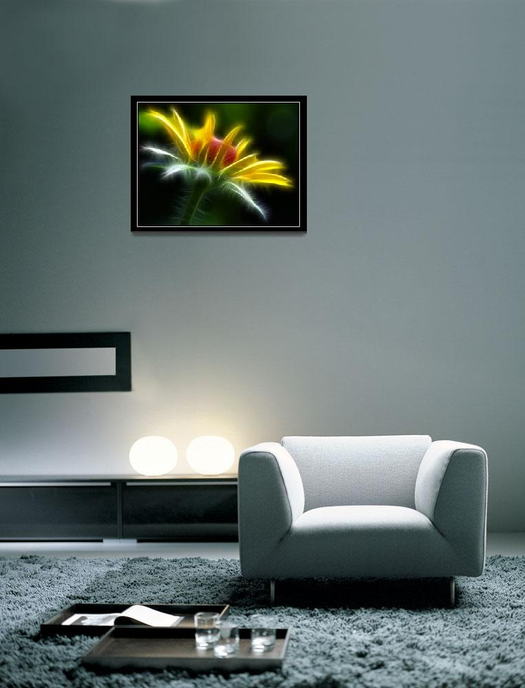 """Glowing Daisy&quot  (2011) by Ninas4otos"