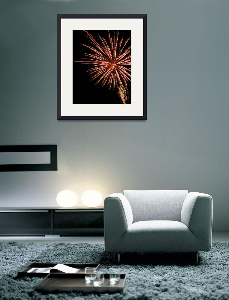 """Palm Tree Ablaze    Fireworks&quot  (2009) by budo"