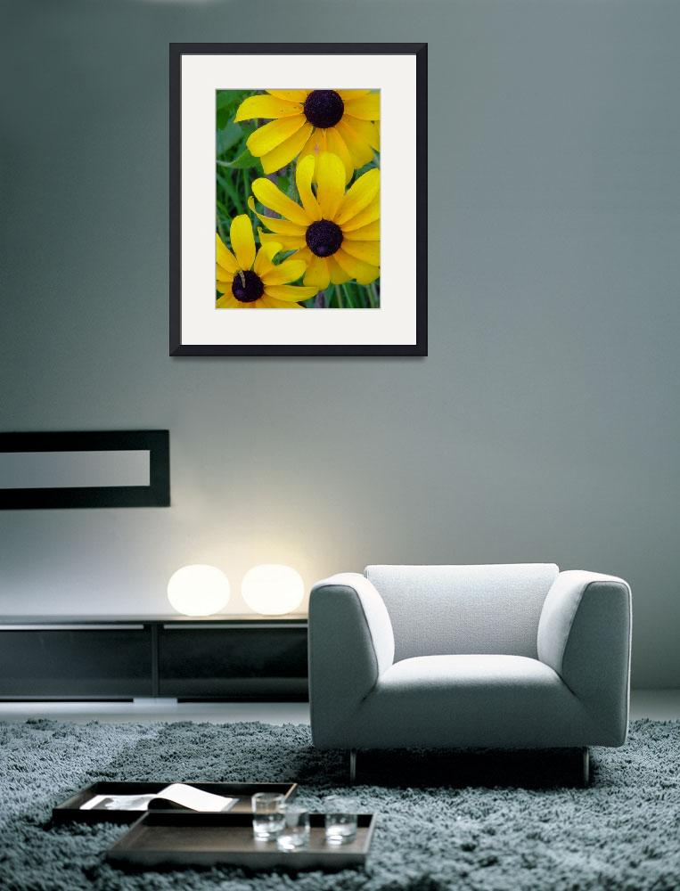 """Black-eyed Susans with Inchworm&quot  (2010) by bleij50"