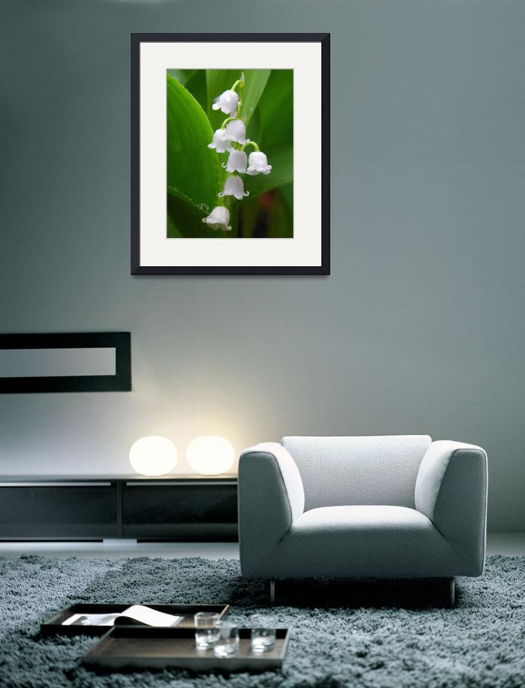 """Lily of the valley&quot  (2013) by vpicks"
