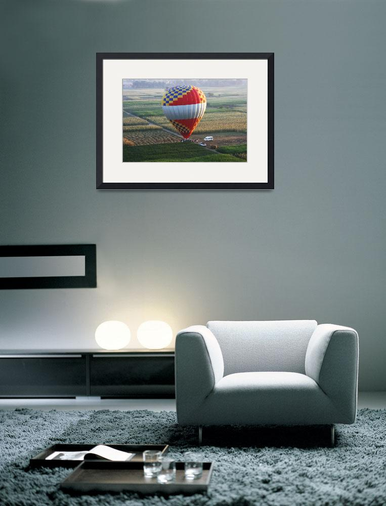 """Balloon landing in the corn fields of Luxor&quot  (2008) by CarrieWaters"
