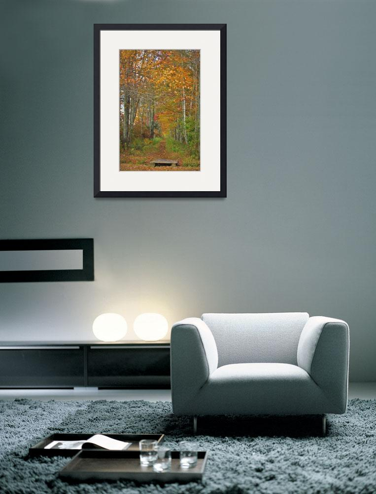"""Peaceful Serene Autumn&quot  (2014) by DBenoit"