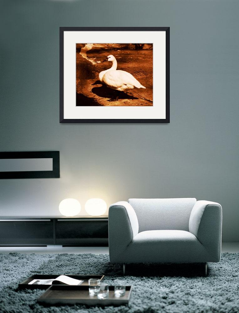 """SWAN ON LAND&quot  (1982) by KimRoeArt"