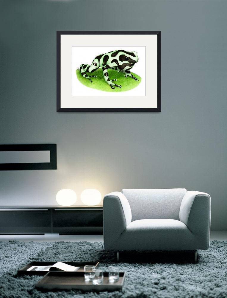 """Green & Black Poison Dart Frog&quot  by inkart"