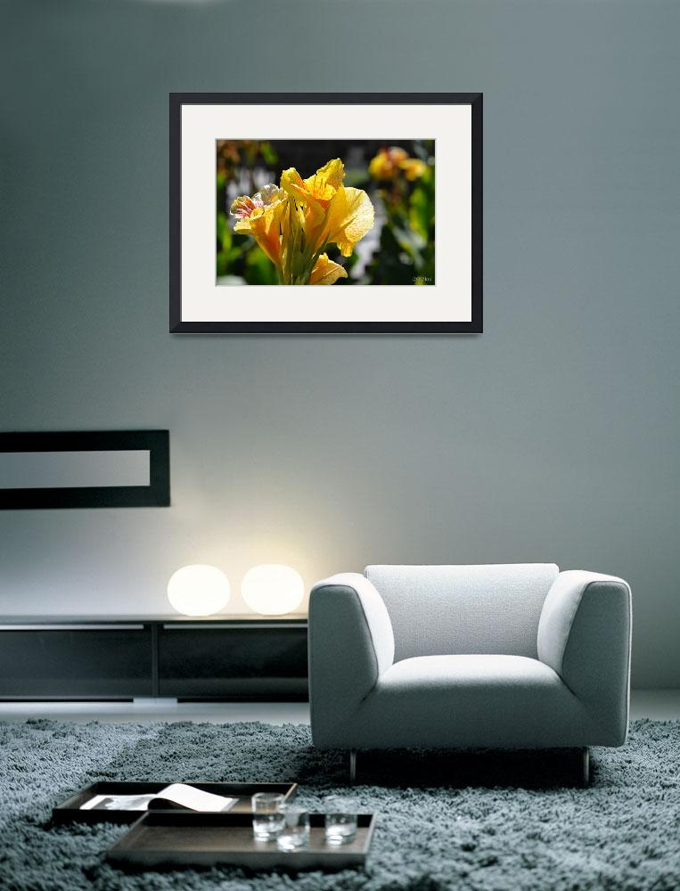 """Yellow Gladiolas in the Sunlight&quot  (2012) by theblueplanet"