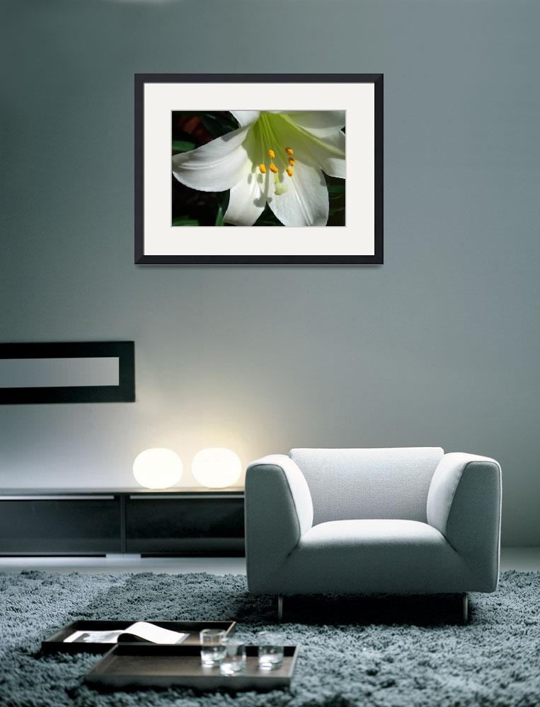 """Lily Flower&quot  (2013) by KsWorldArt"