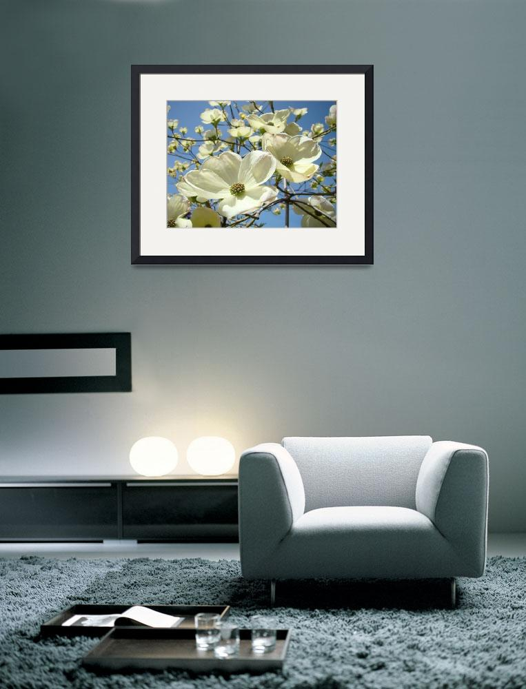 """Blue Sky Spring White Dogwood Flowers Floral&quot  (2014) by BasleeTroutman"