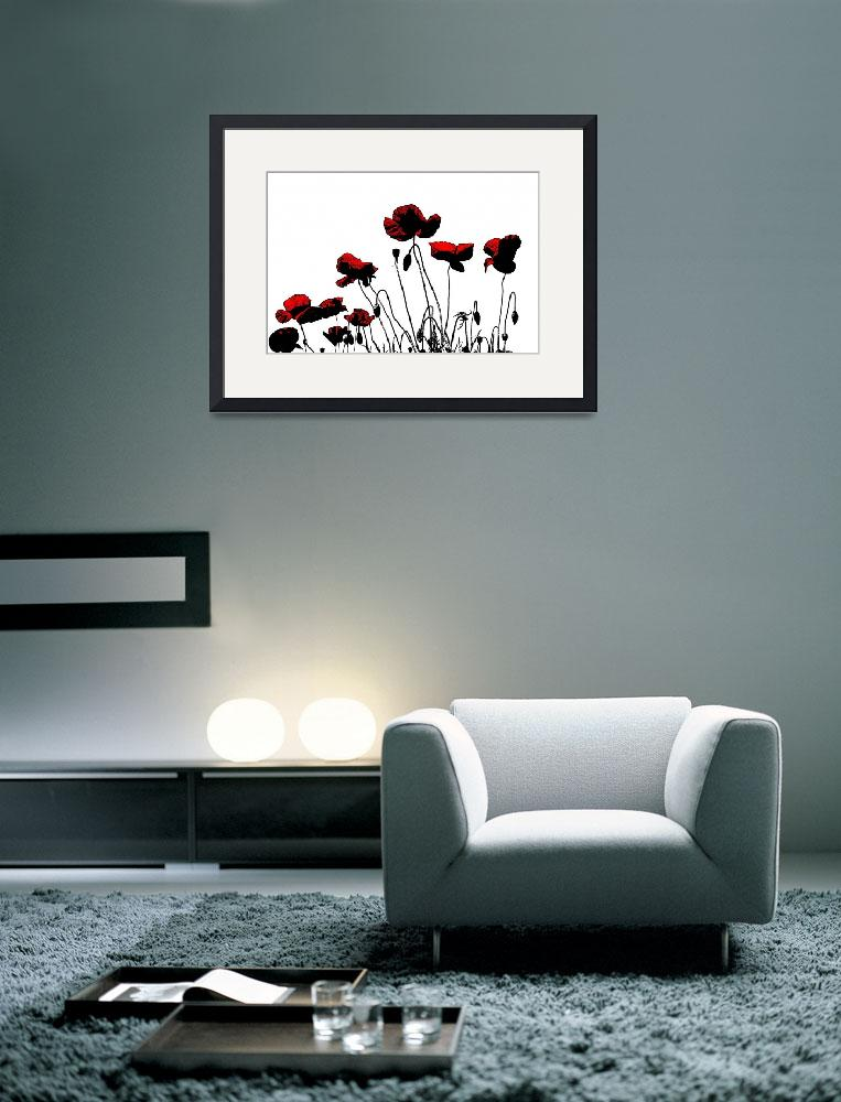 """Painted Poppies&quot  (2011) by ianjeffrey"