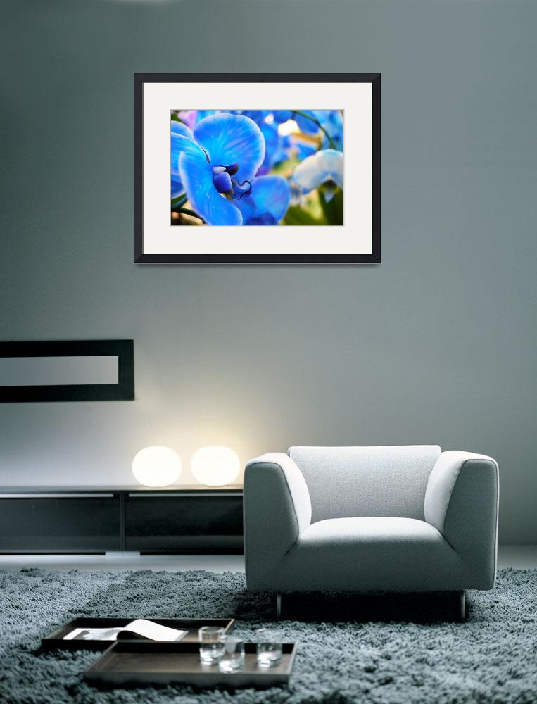 """Blue Orchid&quot  (2012) by ChristinaVerdi"