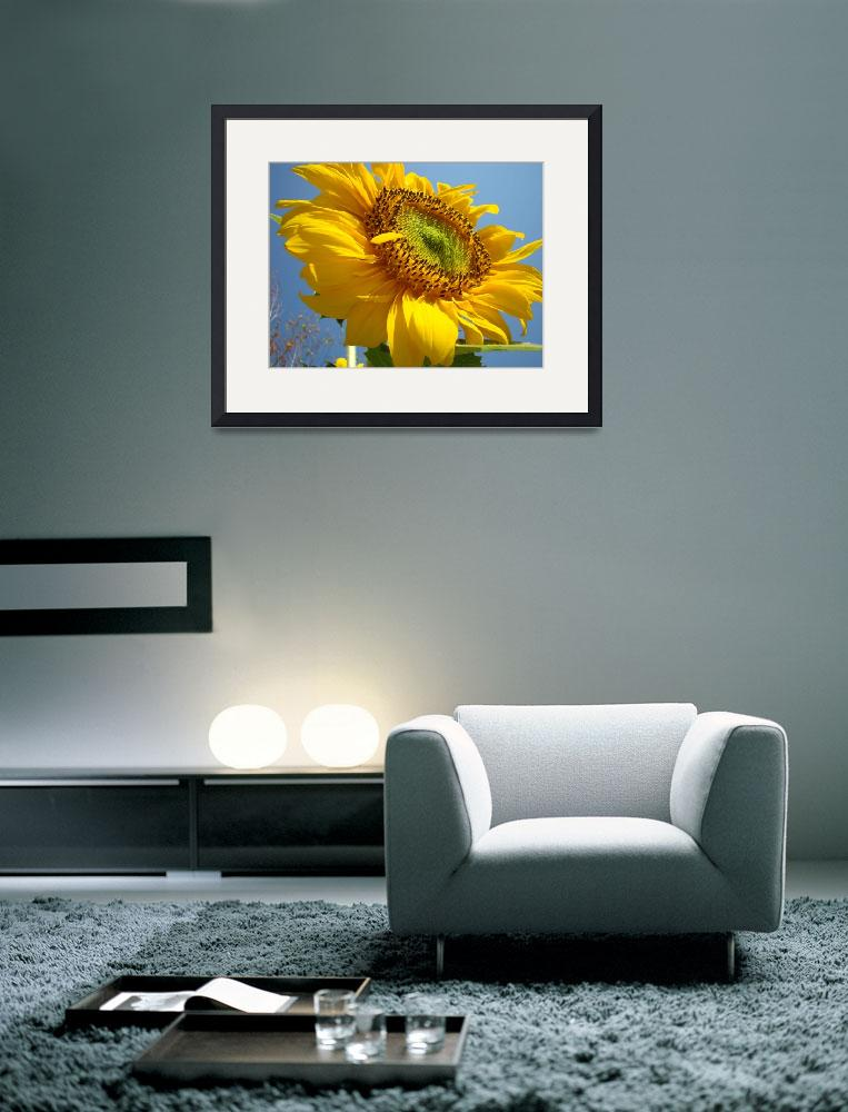 """OFFICE ART Prints SUNFLOWER Art Baslee Troutman&quot  (2009) by BasleeTroutman"