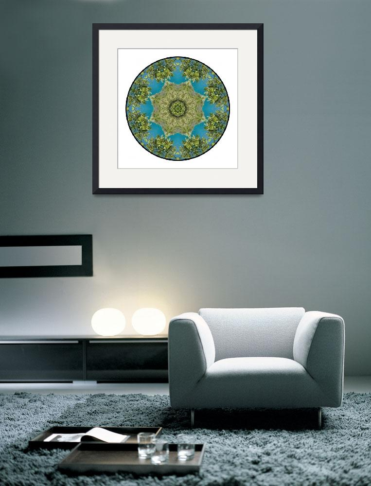 """New Zealand Mandala #1&quot  by wanderlustproductions"