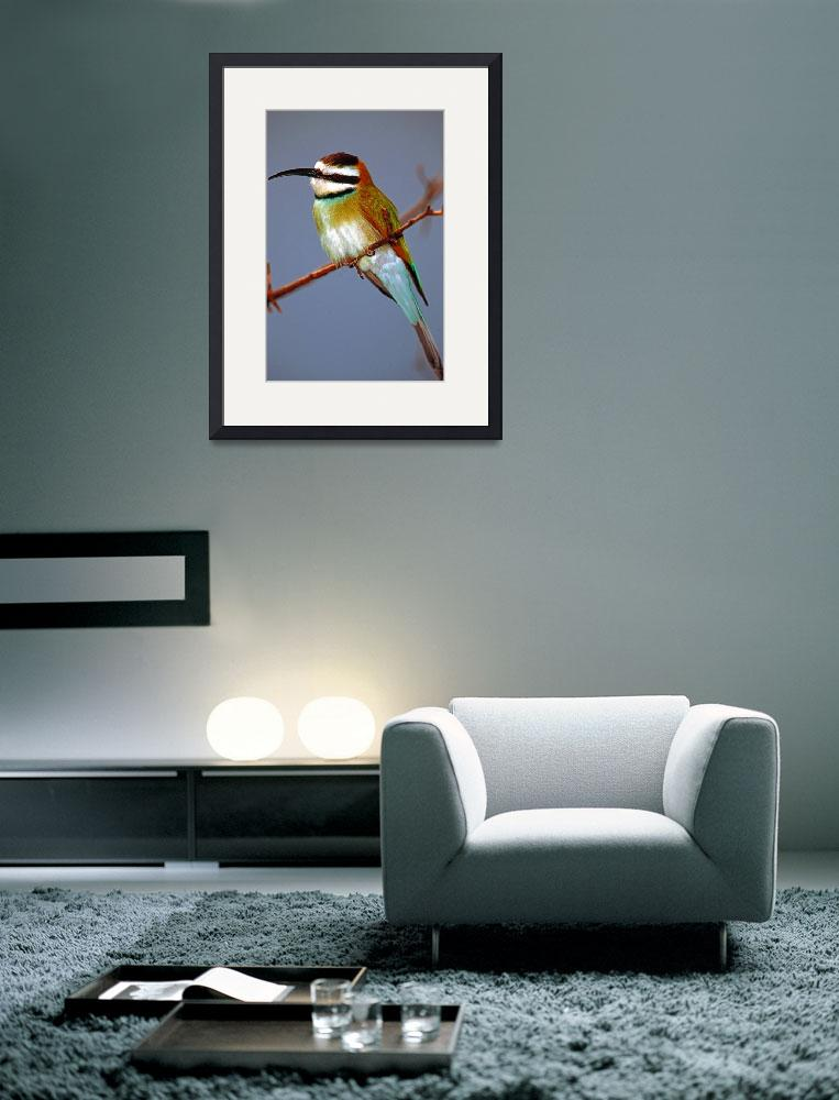 """Green African Bee Eater Bird&quot  (2006) by frankreggio"