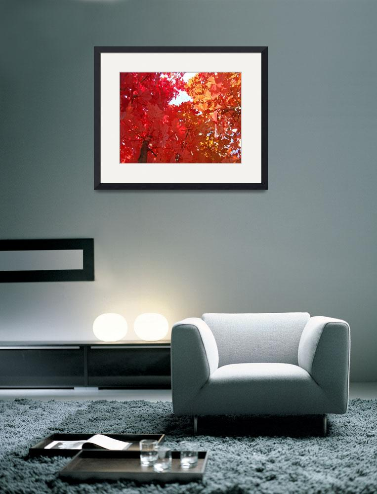 """FALL TREES Autumn Art Red Orange Leaves Landscape&quot  (2009) by BasleeTroutman"