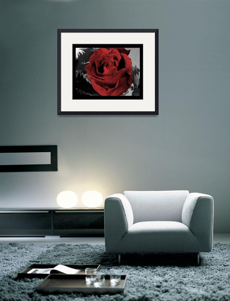 """red rose&quot  by LynZ"