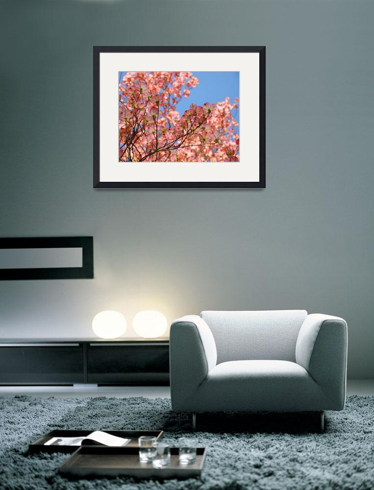 """Nature Landscape Trees Pink Dogwood Flowers Sky&quot  (2010) by BasleeTroutman"