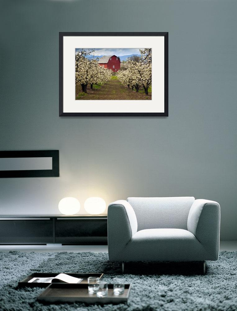 """Red Barn Spring&quot  (2010) by Dawsonimages"