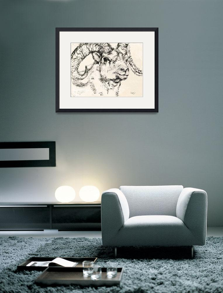 """Charcoal sketch Dall Sheep Ram&quot  (2008) by GinetteCallaway"