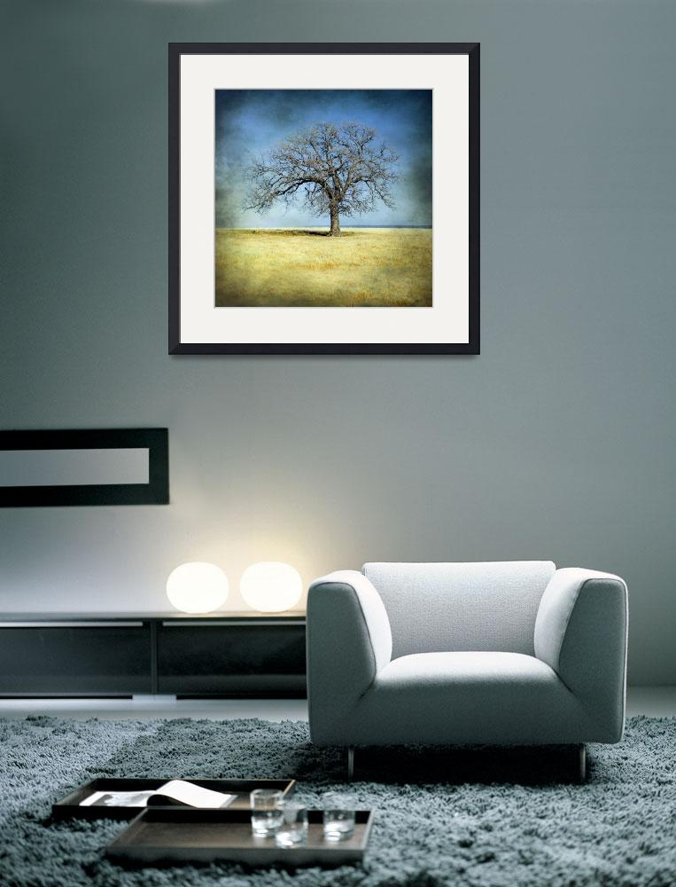 """Lone Tree&quot  (2012) by miir"
