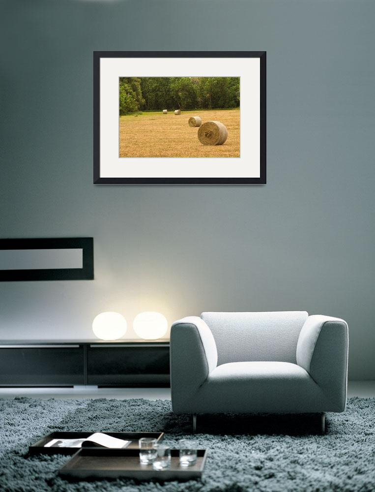 """Field of Freshly Baled Round Hay Bales&quot  (2011) by lightningman"