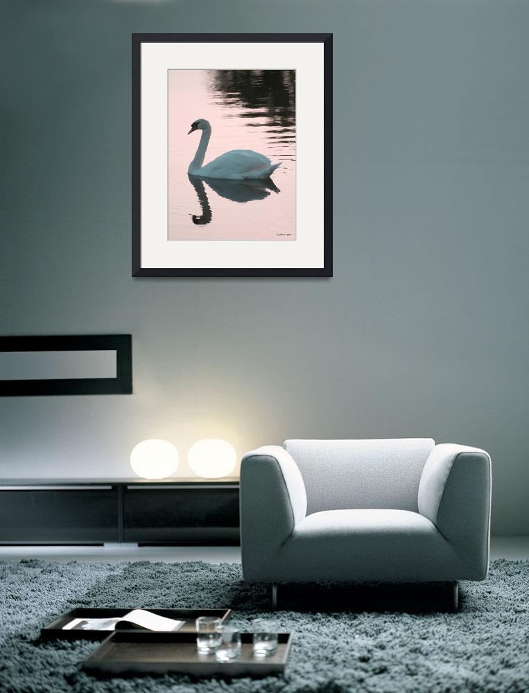 """Swan At Sunset by LAMeyer&quot  (2010) by LAMeyer"