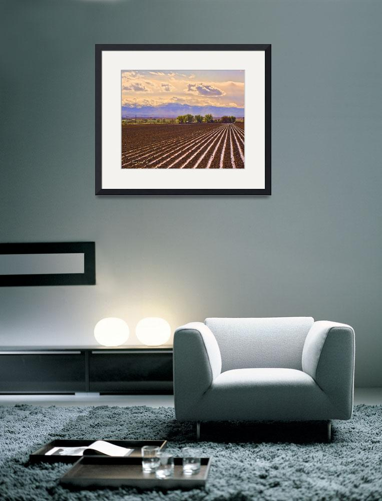 """Irrigation, Owyhee Co., Idaho&quot  (2010) by eye4nature"