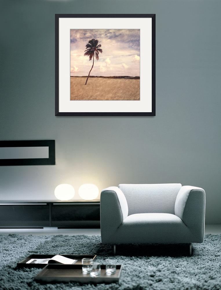 """Lone Palm- Miami Beach,FL&quot  (1998) by joegemignani"