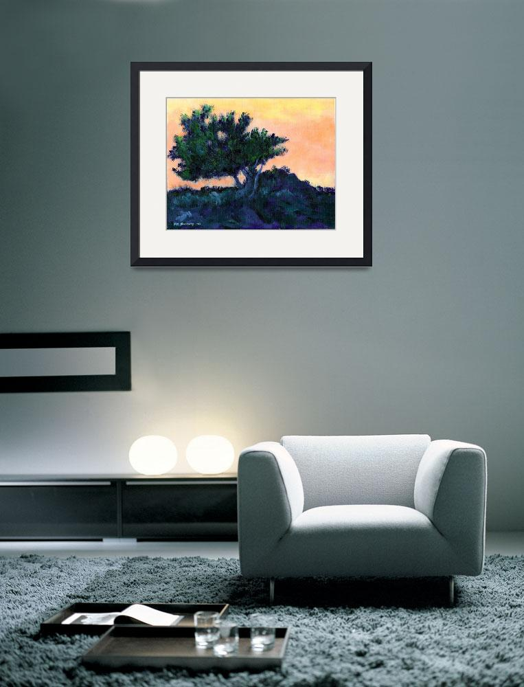"""Torrey Pine at Daybreak by RD Riccoboni&quot  (2009) by RDRiccoboni"