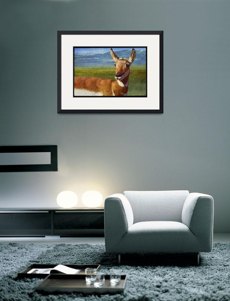 """lady pronghorn&quot  (2010) by rchristophervest"