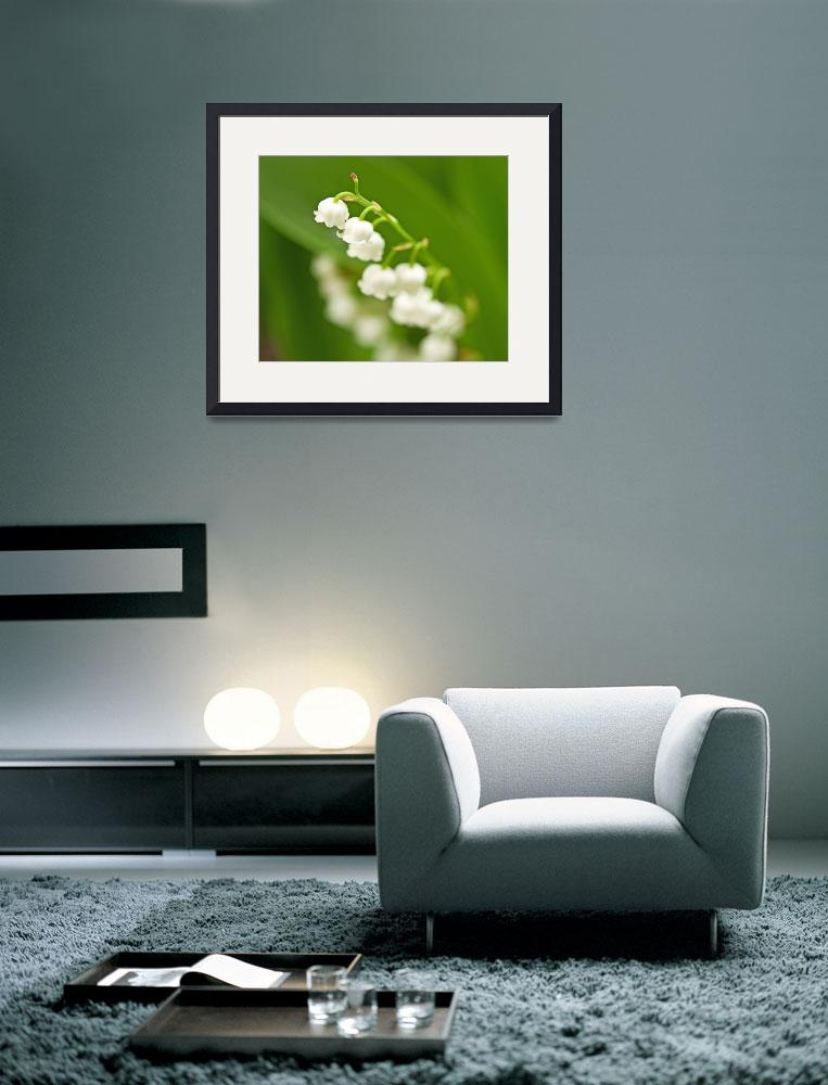 """Lily of the Valley&quot  by LJS"