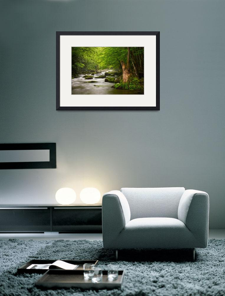 """Smoky Mountains Solitude - Great Smoky Mountains&quot  (2012) by DAPhoto"