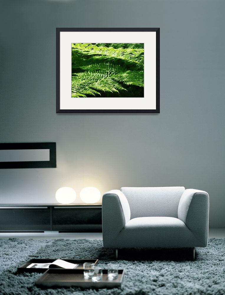 """Green Forest Fern Branches Leaves Art Prints Ferns&quot  (2014) by BasleeTroutman"
