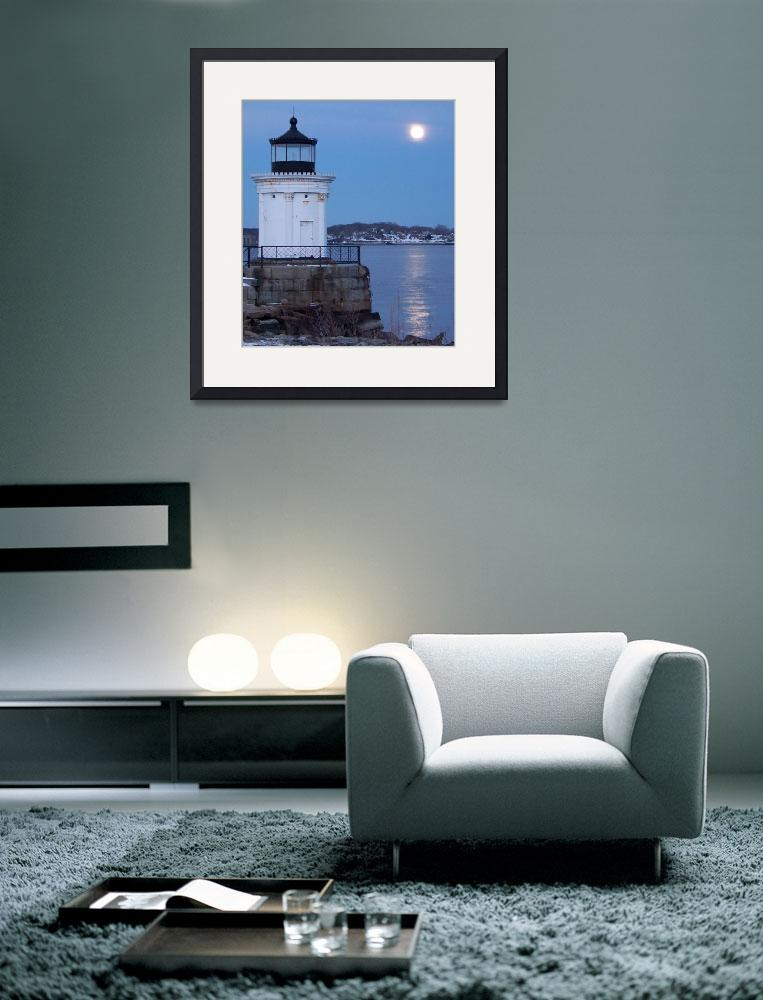 """Bug Light With Wolf Moon Rising&quot  (2009) by crazysuncompany"