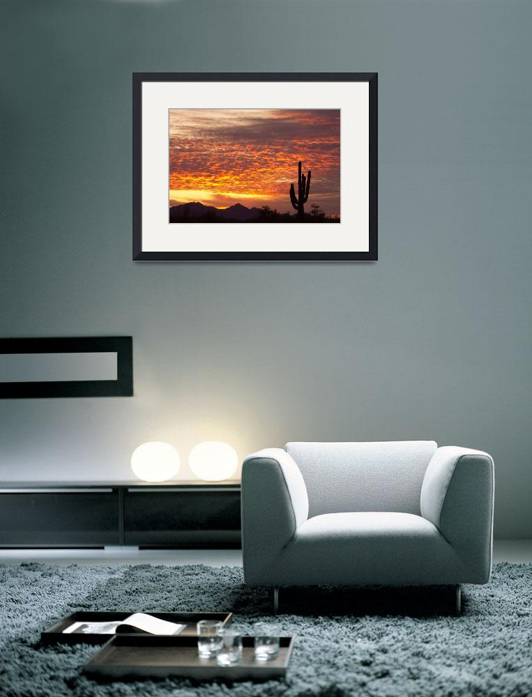 """Arizona November Sunrise With Saguaro&quot  (2011) by lightningman"