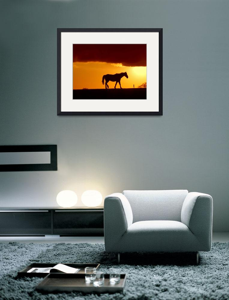 """Horse and the sunset&quot  (2008) by Julietart"