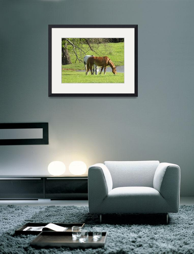 """Horses by the Pond in NE Oklahoma No. 2&quot  (2012) by anniepics"