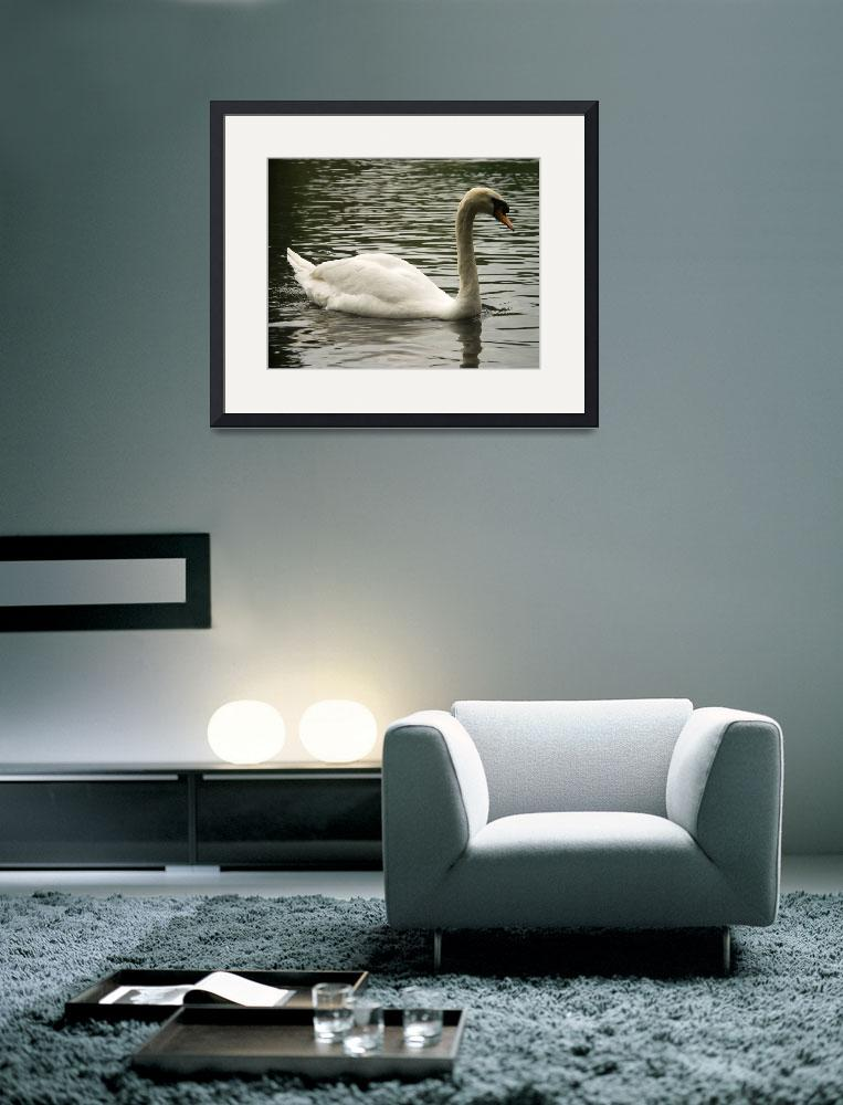 """Swan in the Lake&quot  (2014) by ValeriesGallery"