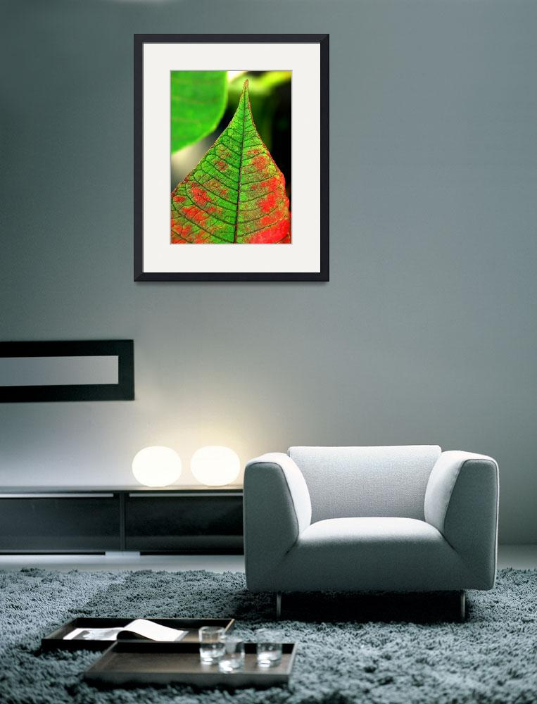 """green red leaf&quot  (2005) by VivianGerogianni"