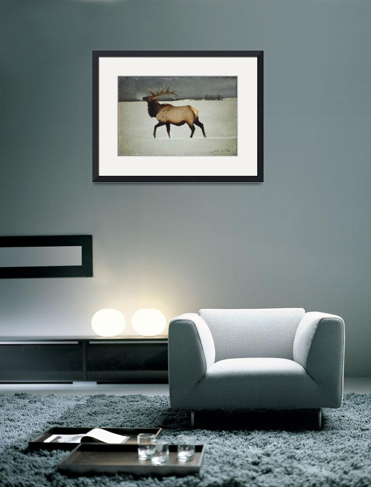 """american elk in silver mist&quot  (2008) by rchristophervest"