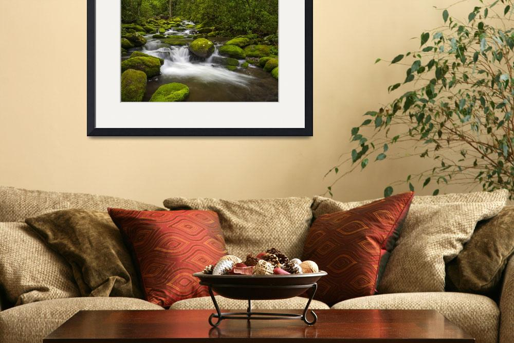 """Great Smoky Mountains National Park River Paradise&quot  (2012) by DAPhoto"