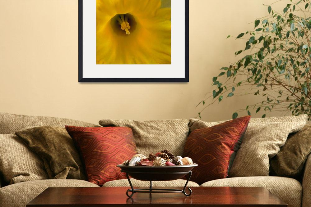 """Mellow Yellow&quot  (2008) by bavosiphotoart"