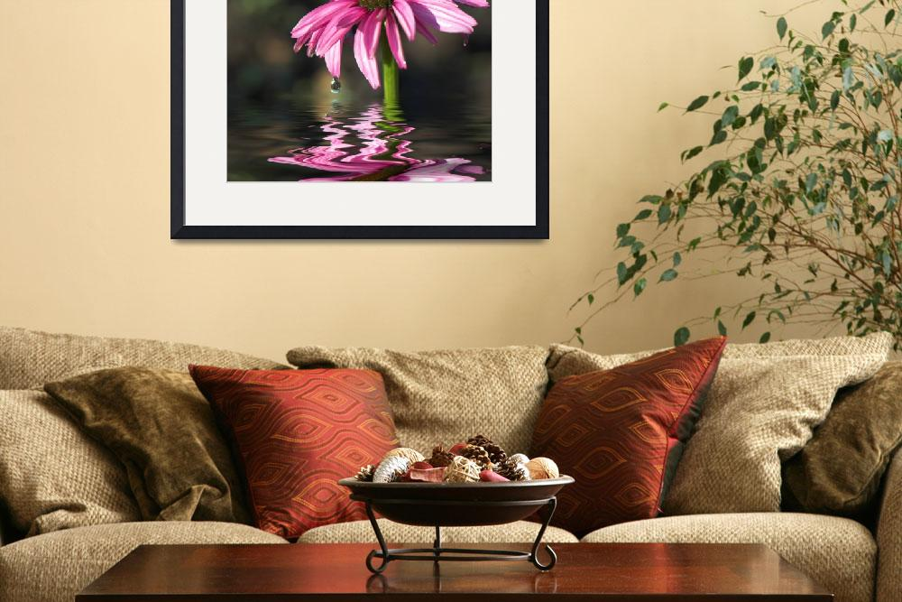 """Pink Cone Flower&quot  (2007) by tricia"