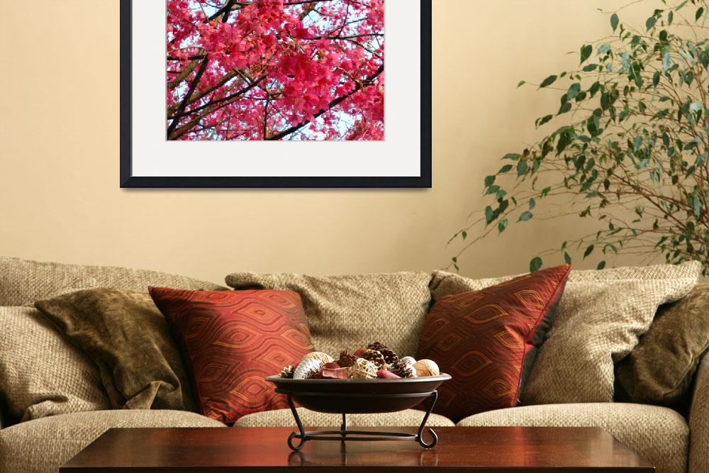 """Blooming cherry blossom&quot  (2013) by lanjee"